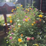 Bed and Breakfast Northeast Ohio - Flowers